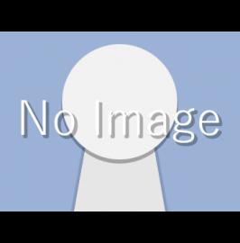 法人クレジットカード比較:オリコEx Gold for Biz
