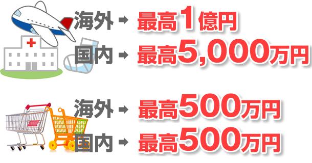 旅行傷害保険 海外最高1億円。国内 最高5000万円。ショッピング保険 国内海外共 最高500万円